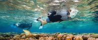 tips maintain easybreath snorkeling mask subea