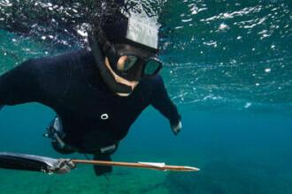 mailles légales et biologiques atlantique manche mer du nord mer méditerranée chasse sous-marine subea