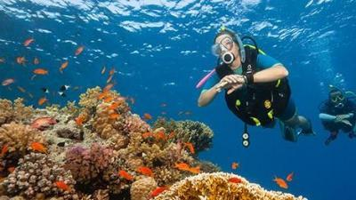 subea-diving-buoyancy-control-device-usage-hints-640.jpg