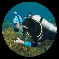 conseil choisir tuba plongée sous marine