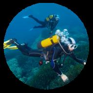 conseil choisir plongée sous marine subea