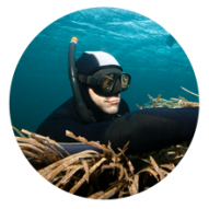 conseil choisir masque chasse sous marine subea