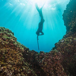 spearfishing freediving tips subea