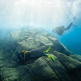 scuba diving tips subea