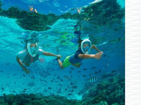 conseil sécurité plongée snorkeling subea