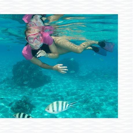 conseil sécurité plongée snorkeling risque environnement marin subea