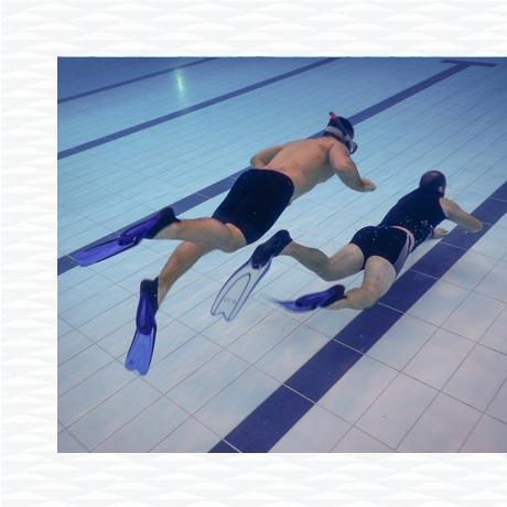 conseil préparation physique piscine entraînement palmage subea