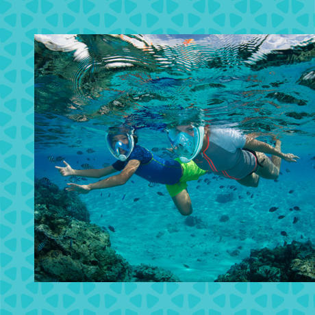 conseil choisir lieu pratique snorkeling subea