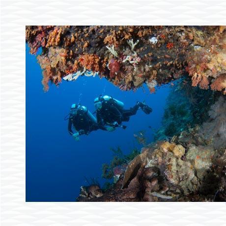 tips scuba diving flight safety subea