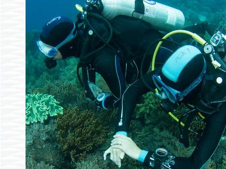 diving tips diving in pairs safety subea