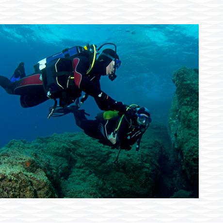 autonomous diver safety