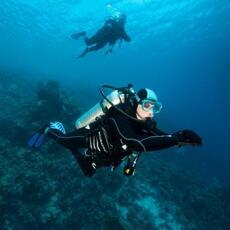 tips getting back to scuba diving with subea