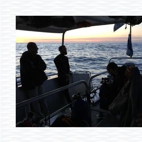 conseil caractéristiques plongée sous marine nuit subea