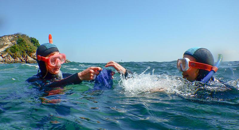 subea days nettoyage fonds marins hendaye snorkeling