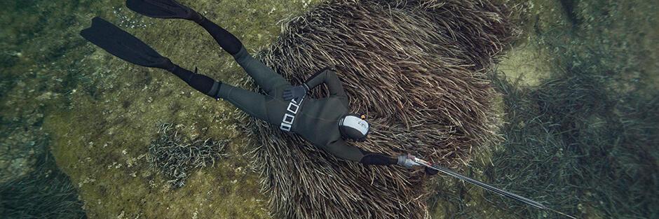 réglementations mailles interdictions chasse sous-marine subea