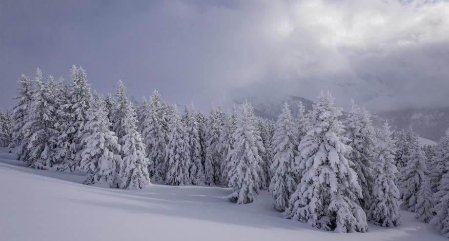 de la neige cet hiver ?