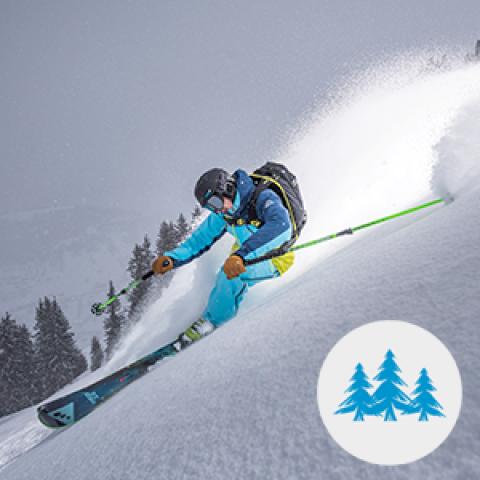 pratique freeride ski