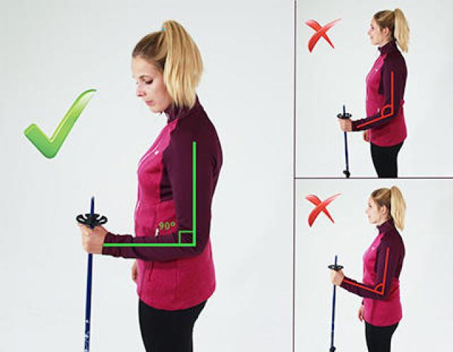 Comment choisir ses bâtons de ski ? | Wedze
