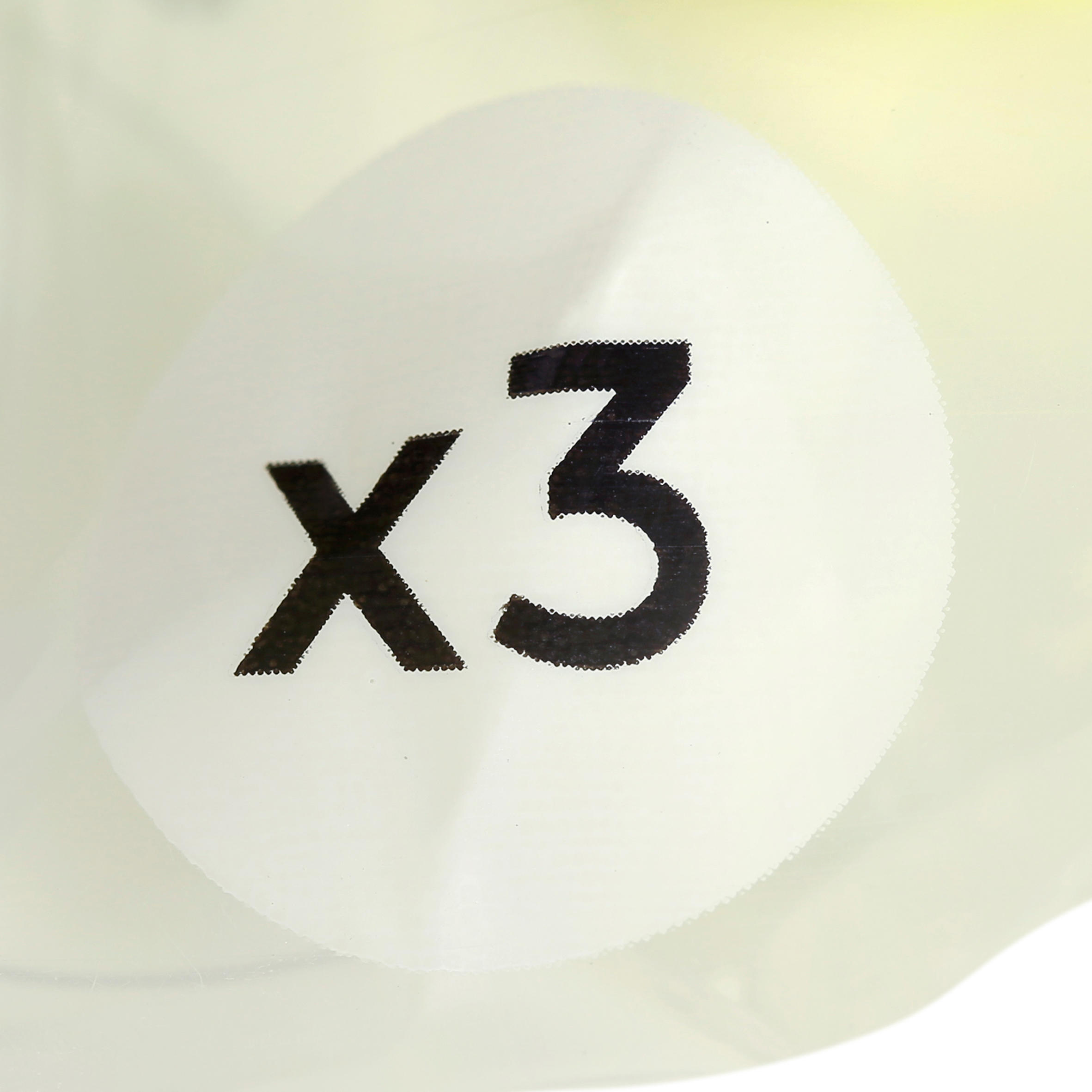 3 COCHONNETS DE PÉTANQUE LOISIR