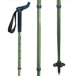 Hike 300 Rod Type Hiking Pole - Green