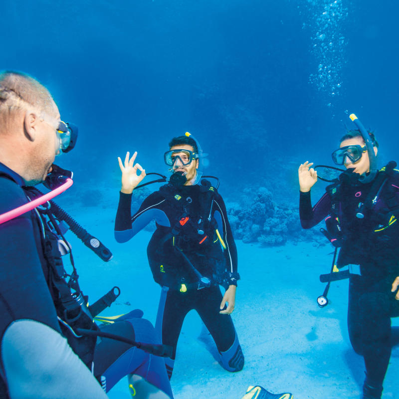 tips diving family couple subea