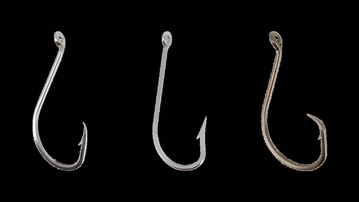 haak-cephalopoden