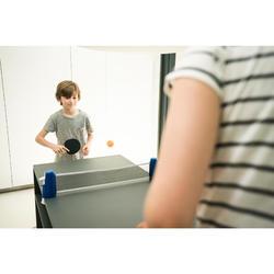 迷你創意可攜式桌球網套組(附2支球拍及2顆球)
