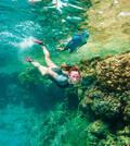 MASKY A ŠNORCHLY NA POTÁPĚNÍ Potápění a šnorchlování - ÚCHYT NA ŠNORCHL SCD SUBEA - Freediving a podmořský rybolov