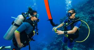 Conselhos para mergulho com parceiro
