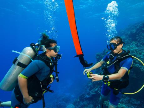 Tornar-se mergulhador autónomo para prolongar o prazer!