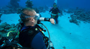 Conselhos de segurança para mergulho e snorkeling