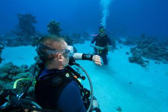 潛水與浮潛的安全貼士