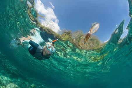 Snorkel freediving FRD120 untuk dewasa turquoise
