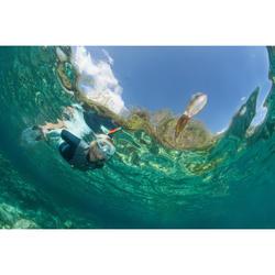 Schnorchel Freediving FRD120 Erwachsene türkis