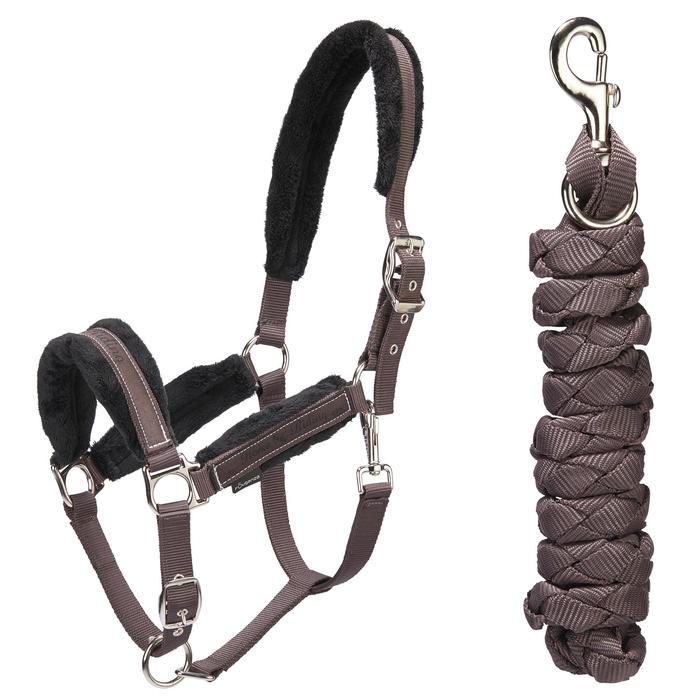 Licol + longe équitation poney et cheval WINNER - 1491169