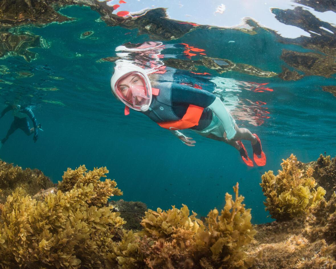 Como escolher o seu equipamento de snorkeling?