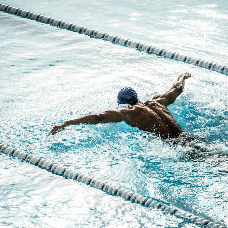 natation sport en club