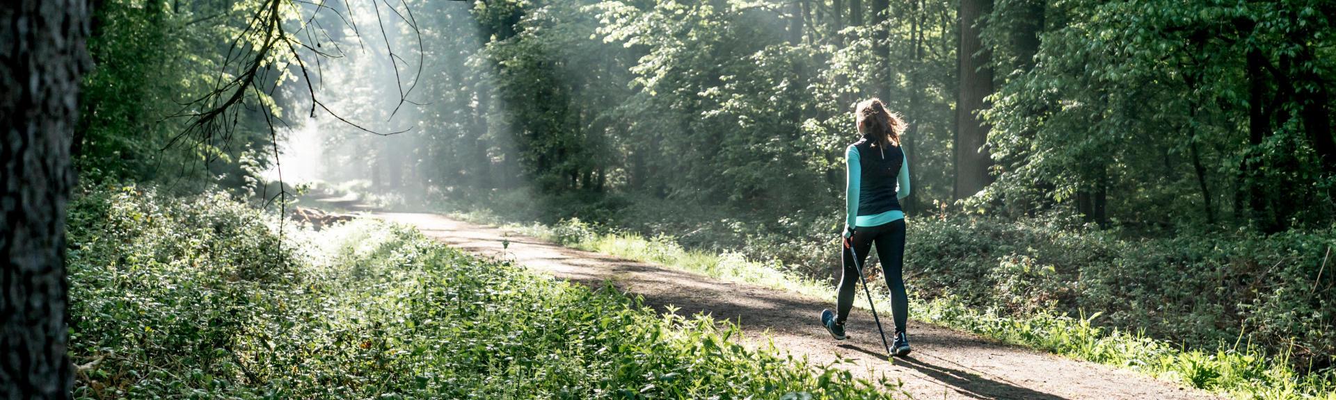 astuces-pour-se-protéger-des-insectes-en-forêt-marche-nordique