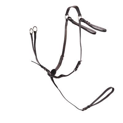 زناقة صيد ركوب الخيل– لون الأسود