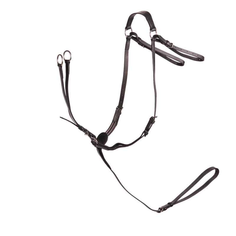 Schooling Horse Riding Martingale For Horse - Black