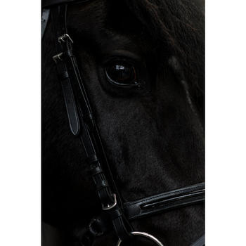 Bridon équitation 580 GLOSSY noir taille poney