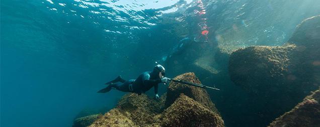 Lexique de la chasse sous-marine subea decathlon