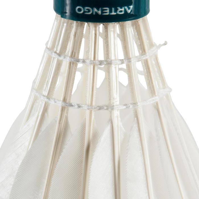 Badmintonshuttles BSC 950 (snelheid 77 - goedgekeurd door FFBad) - koker van 12