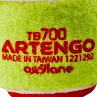 BALLE DE TENNIS TB100 ROUGE