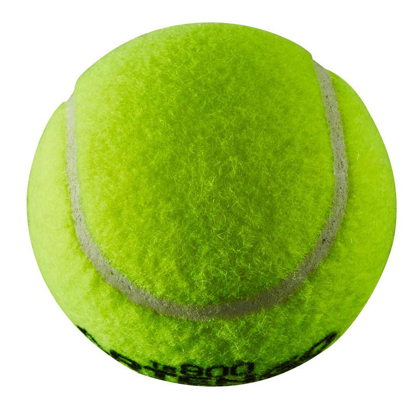 Tennis ball beginner - TB800 Yellow