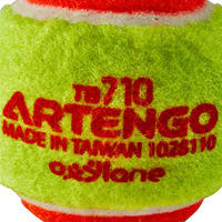 TB110 TENNIS BALL - ORANGE