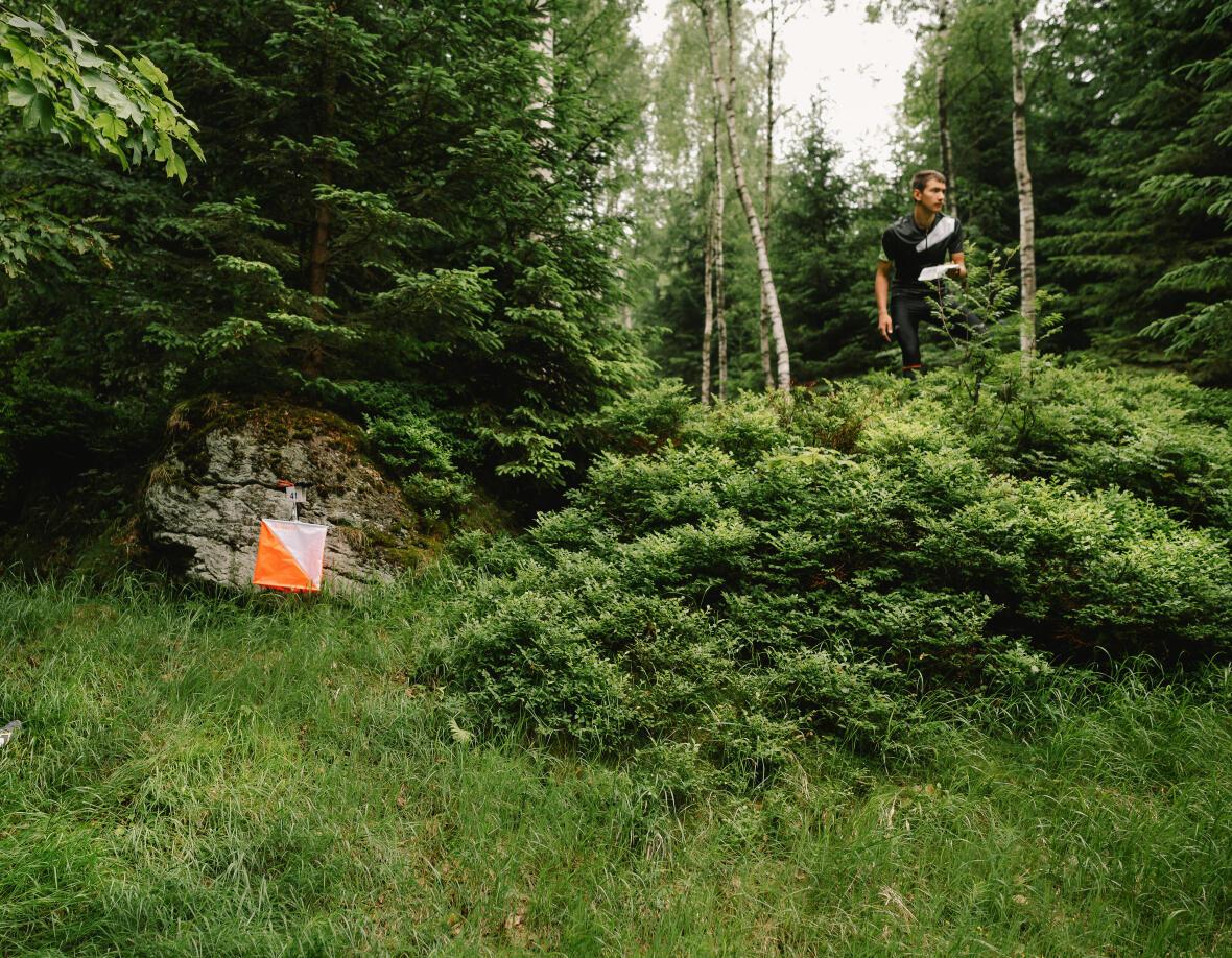 Benefici orienteering