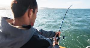 Pêche traine