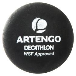 SET SR 960 (Raquette SR 960, sac à dos, Serviette, Balle SB990, Bandeau poignet)