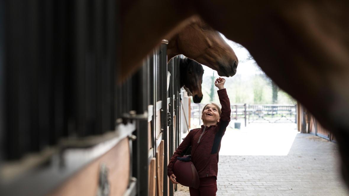 Alt/prendre-soin-cheval-hiver-teaser